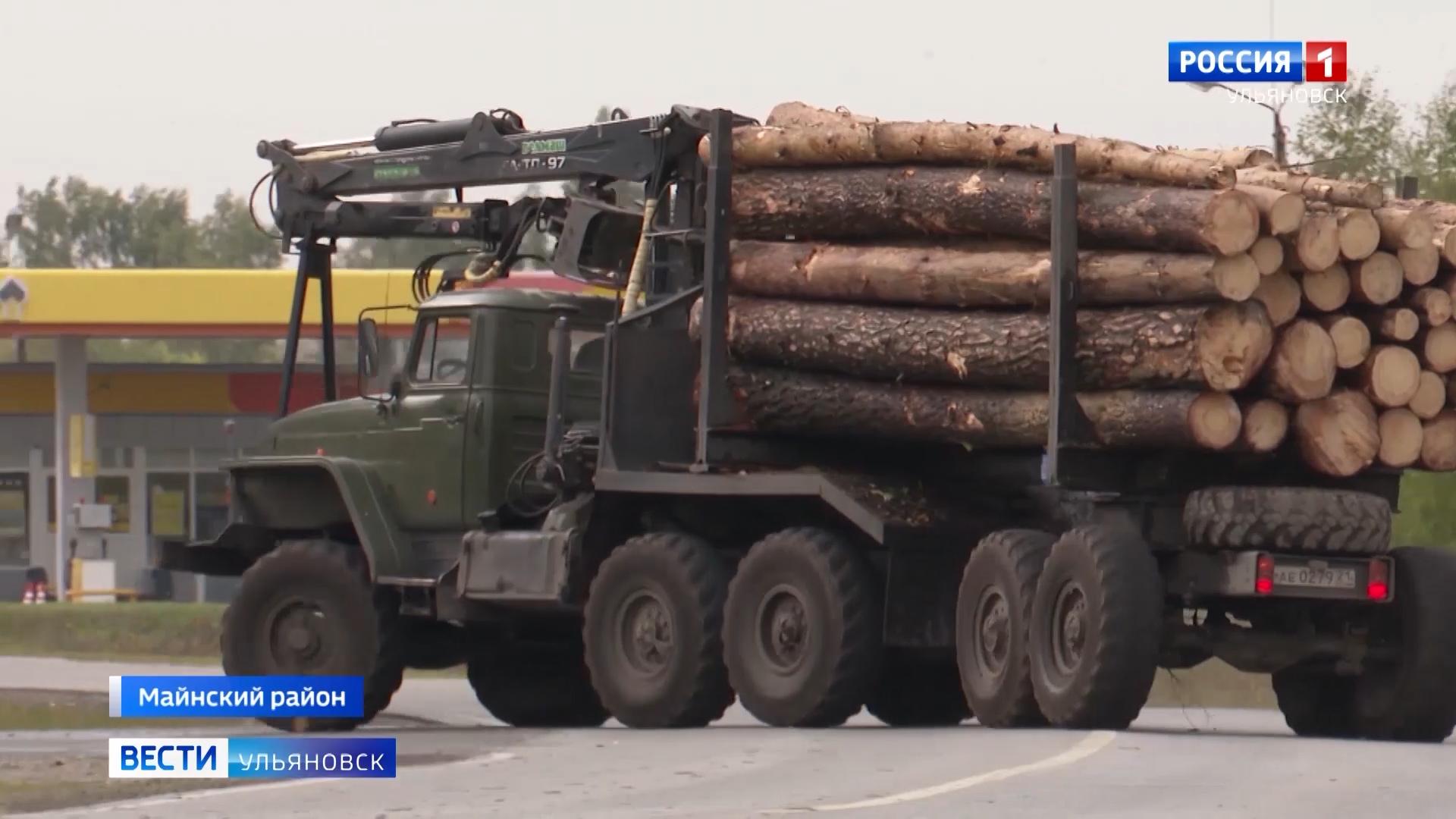 Осенний этап традиционной межведомственной акции «Лес» проходит в нашем регионе